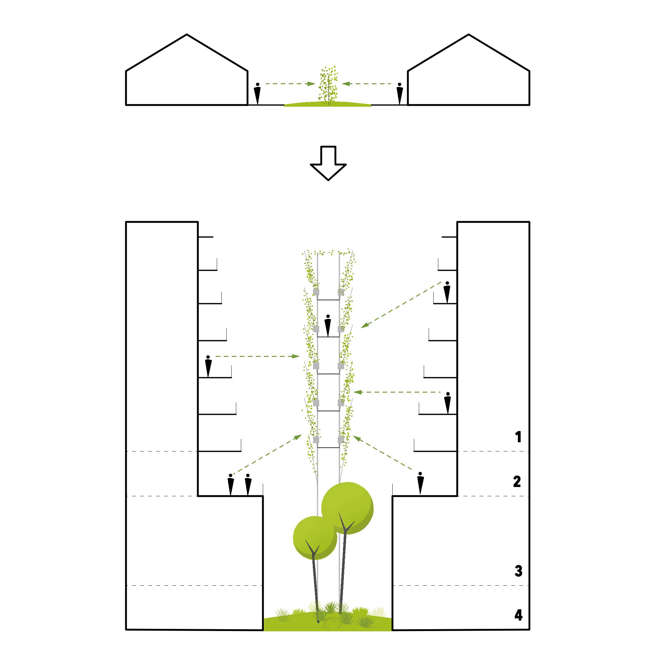christophe-benichou-architectures-mur-haie-12